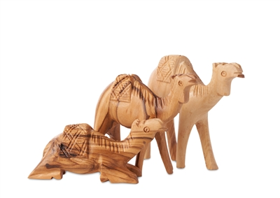 hand-crafted olive wood Camel set made in Bethlehem